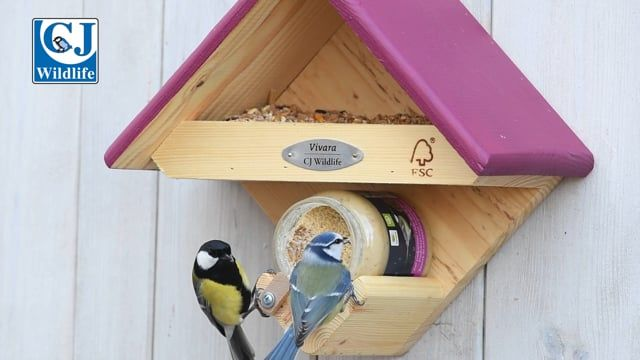 Peanut Butter for Birds - with Mealworms