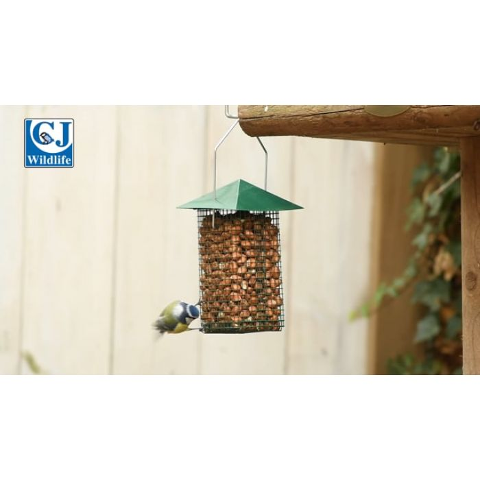 Green Peanut Feeder Cage