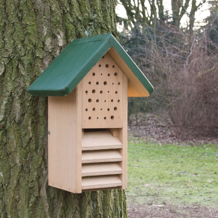 Duo-Insect & Ladybird House - Green Roof