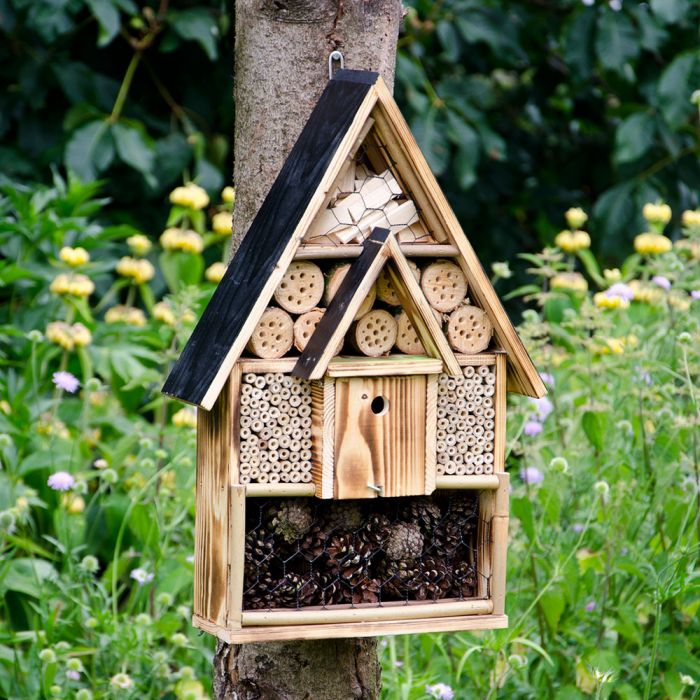 Insect Residence