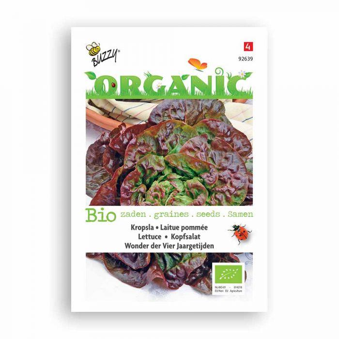 Buzzy® Organic Lettuce - Merveille 4 Saiso