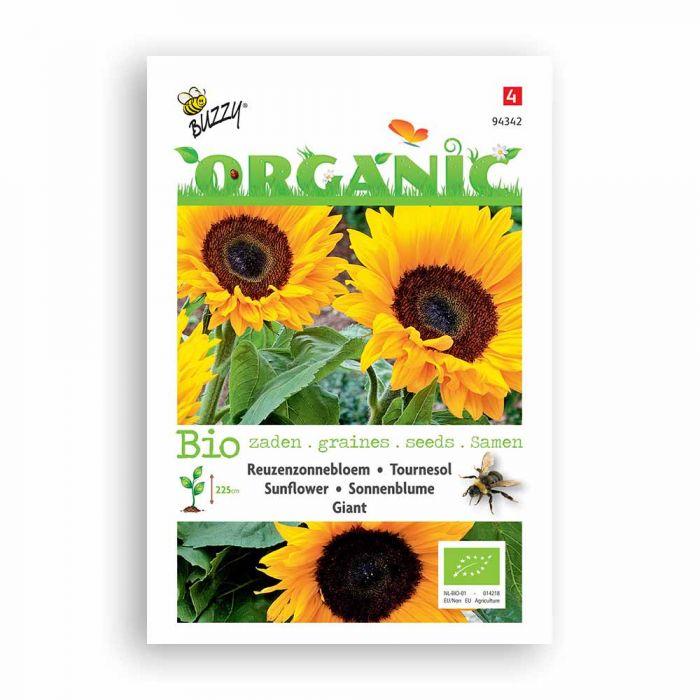Buzzy® Organic Sunflower - Giant (BIO)