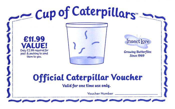 Certificate for Replacement Caterpillars
