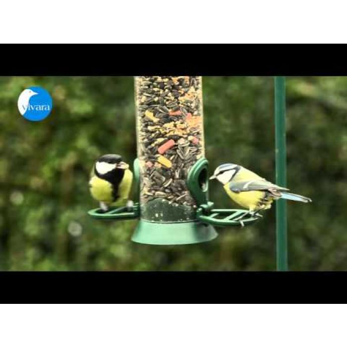 Table Bird Seed Mix Plus