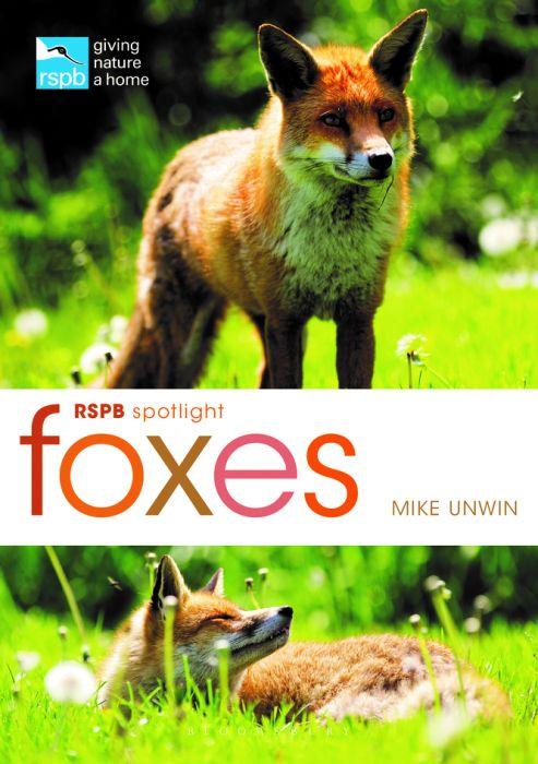 RSPB Spotlight; Foxes