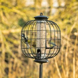 Apollo Guardian for 3 Port Seed Feeder