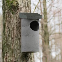 WoodStone® Tawny Owl Nest Box