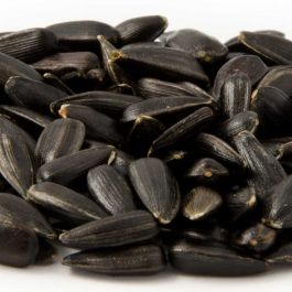 Black Sunflower Seeds - Bird Food