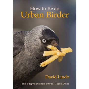 How To Be An Urban Birder Book