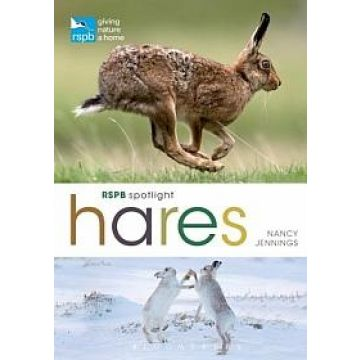 RSPB Spotlight: Hares Book