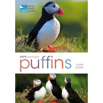 RSPB Spotlight: Puffins Book
