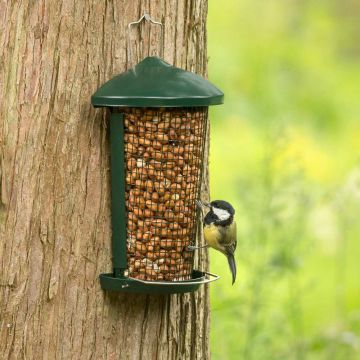 Delta Peanut Feeder Green