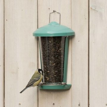 Delos Seed and Mealworm Feeder Green