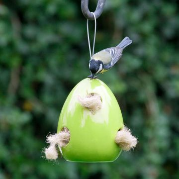 Fiesta Nester (Green) + FREE Nesting Wool