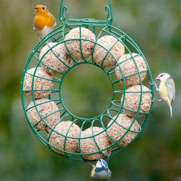 Fat Ball Feeding Ring