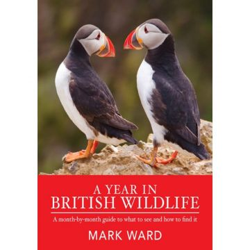 A Year in British Wildlife Book: A Month-by-Month Guide to What to See and How to Find It