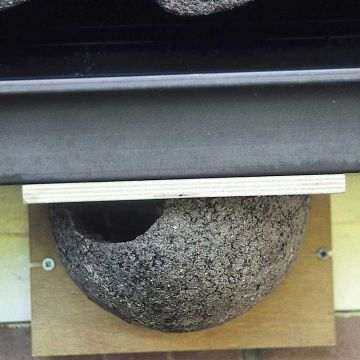 House Martin Nest (Left Single)