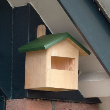 Ecuador Half-Open Nest Box