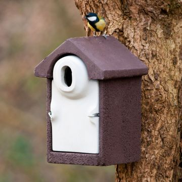 WoodStone® Seville 32mm Oval Hole Nest Box (Brown)