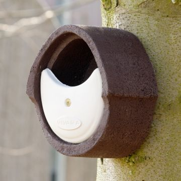 WoodStone® Alicante Open Nest Box (Brown)