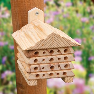 Bee' Mini Insect House