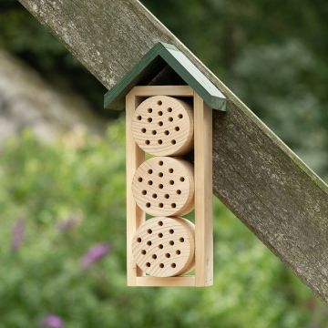 Bee Hotel Ustica