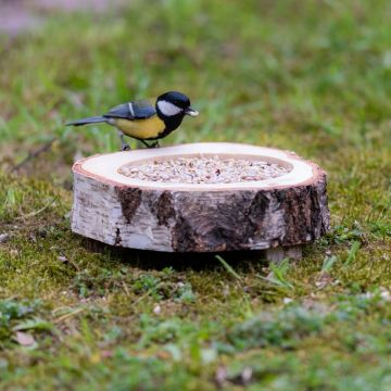 Hamar Bird Feeding Dish