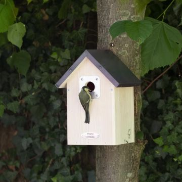 Anchorage 34mm Nest Box