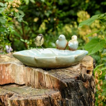 Vico Bird Bath