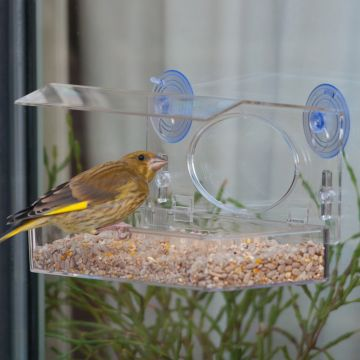 The Rhodes Window Feeder Pack