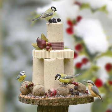 Winter Bird Cake Pack