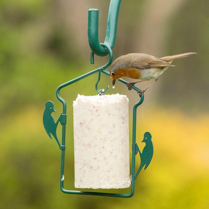 National Trust Gourmet Robin Peanut Cake 500ml