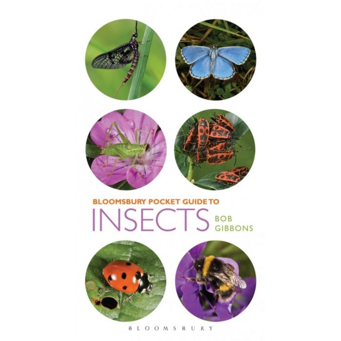 Bloomsbury Pocket Guide to Insects Book