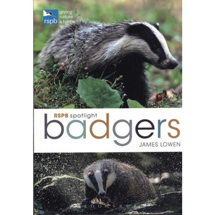 RSPB Spotlight: Badgers