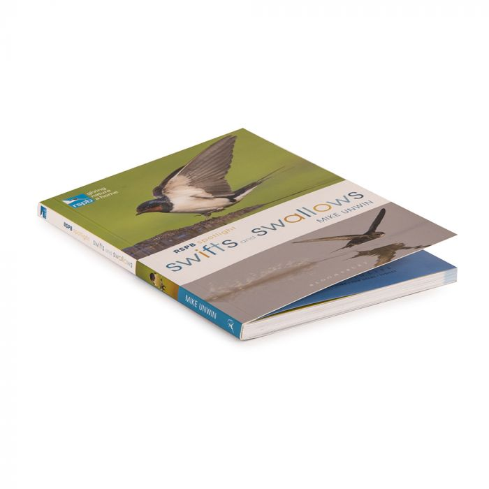 RSPB Spotlight: Swifts and Swallows Book