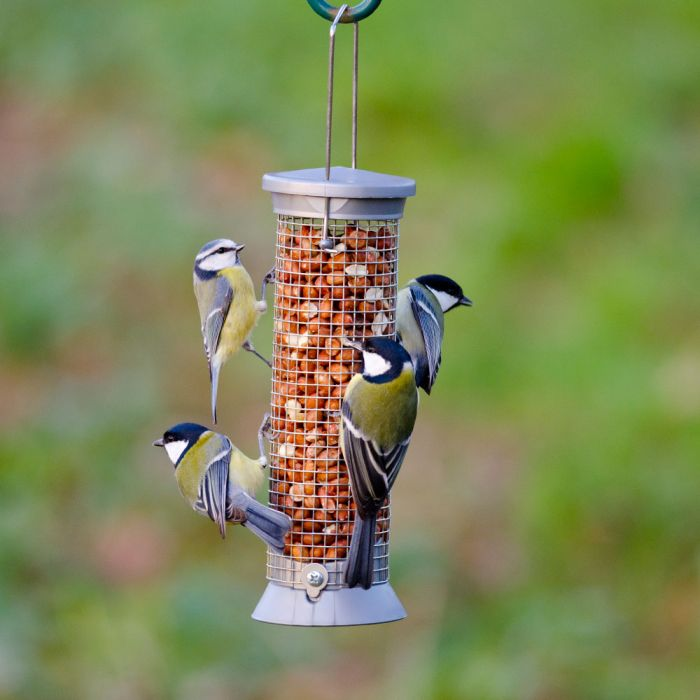 Small Silver Defender Peanut Feeder