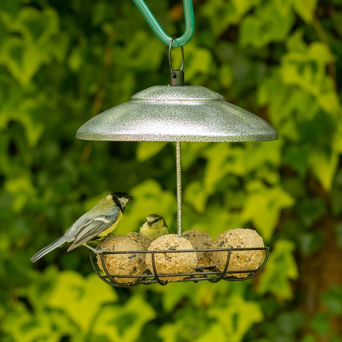 Bunbury Fat Ball and Peanut Butter Bar Feeder Silver