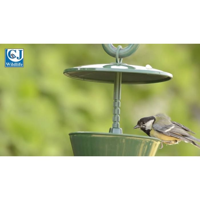National Trust Suet Pellet & Mealworm Feeder