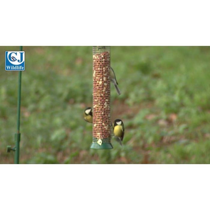 Medium Green Defender Peanut Bird Feeder & 2.5kg Peanuts
