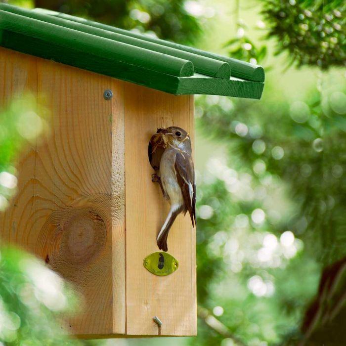 Saba 32mm Nest Box