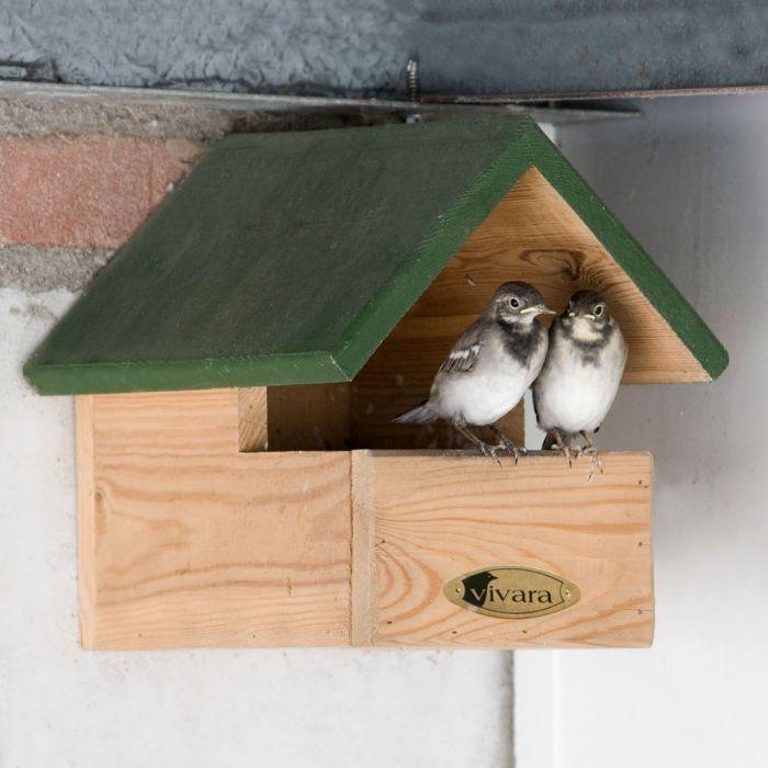 Blackbird Open Nest Box