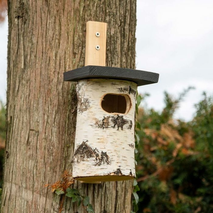 Lenvik Nest Box
