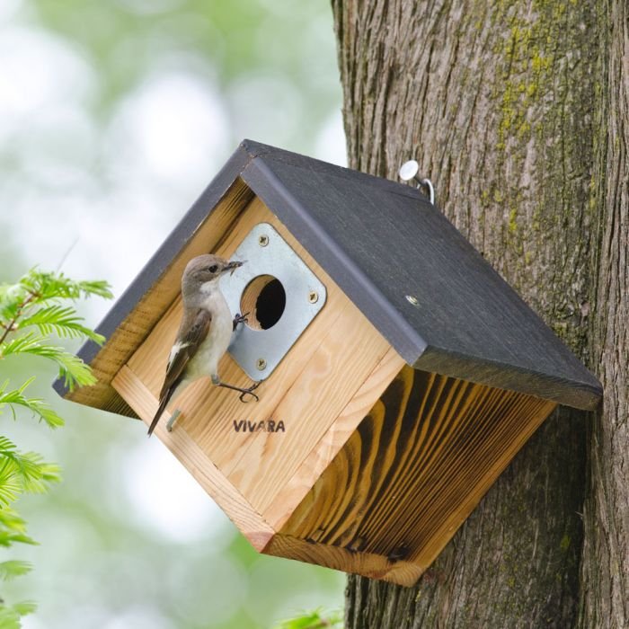 Alamo 32mm Nest Box