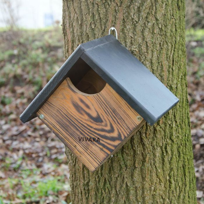 Austin Nest Box