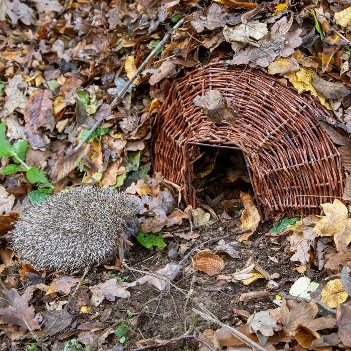 Hedgehog Basket Grand