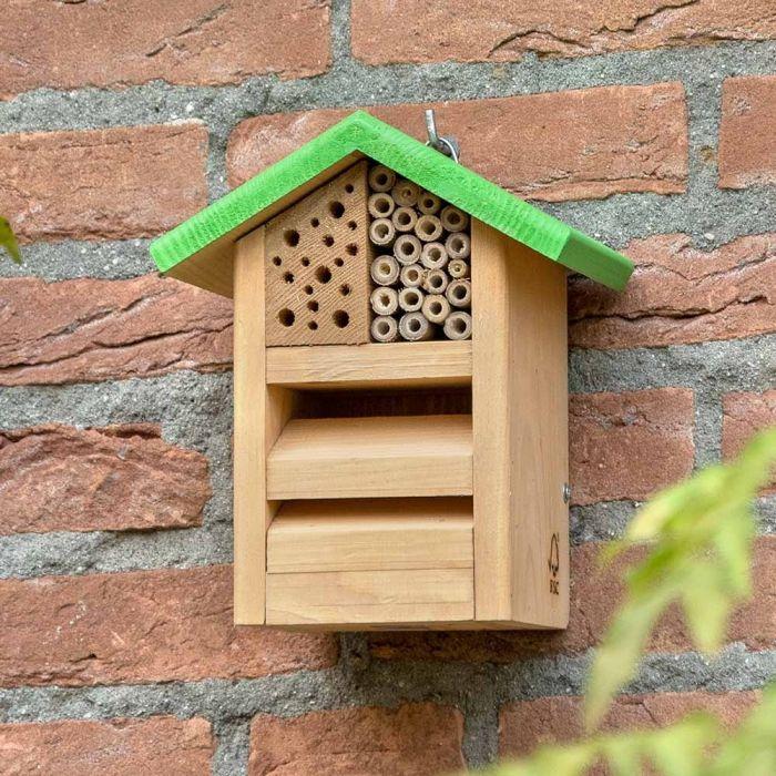 Green Bee Habitat