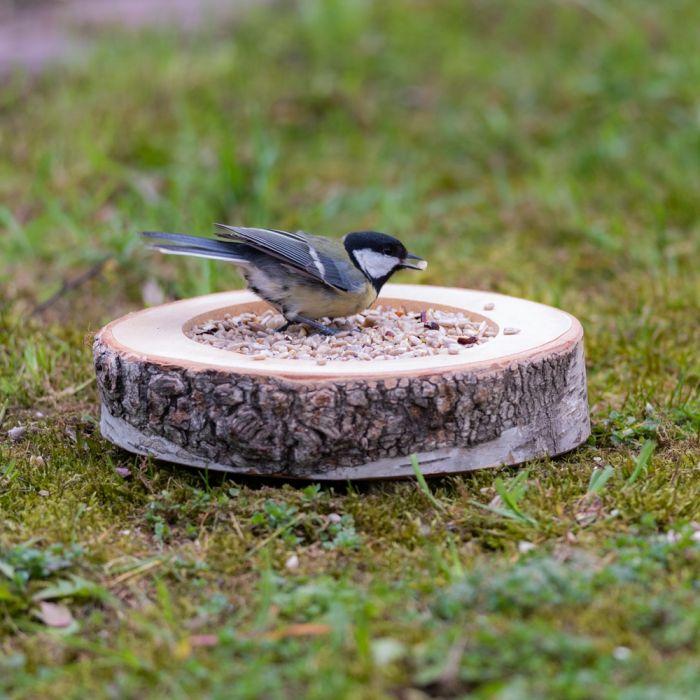 Hamar Bird Feeding Dish