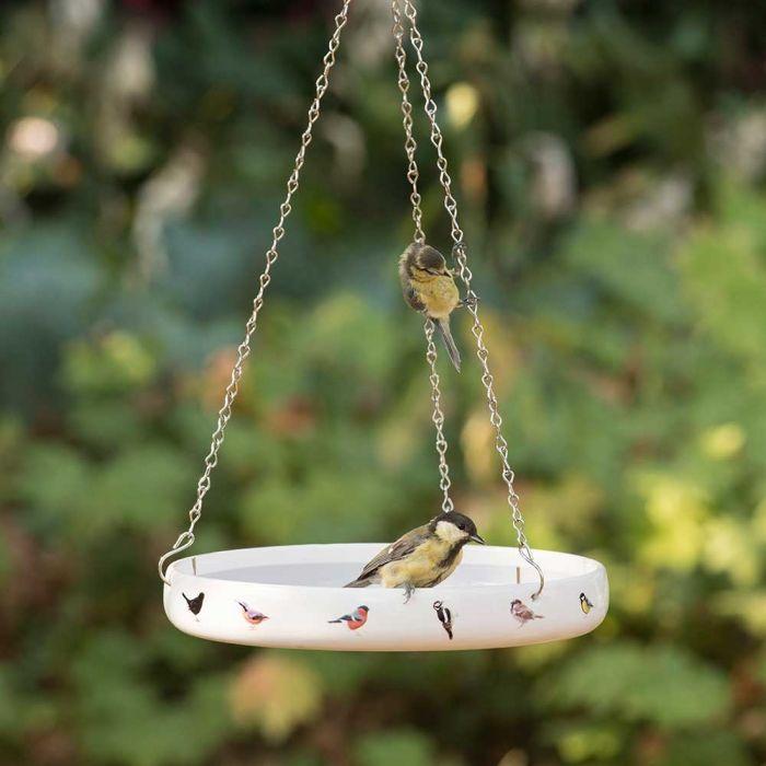 Garden Birds Water Dish