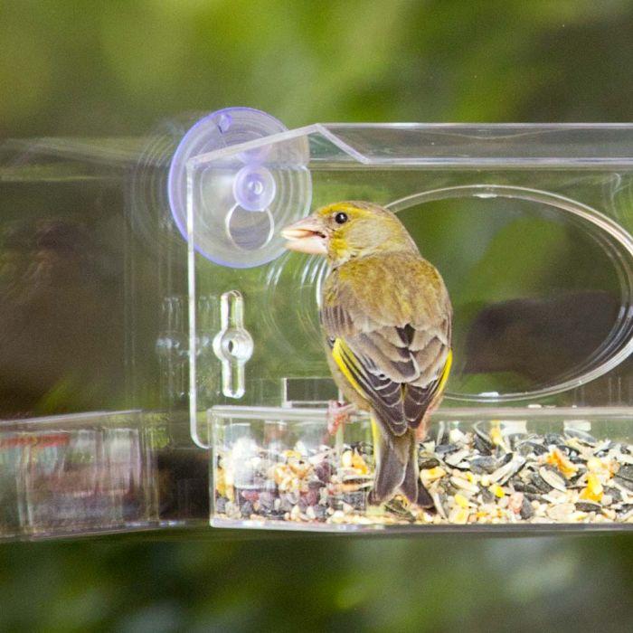 Table Bird Seed Mix