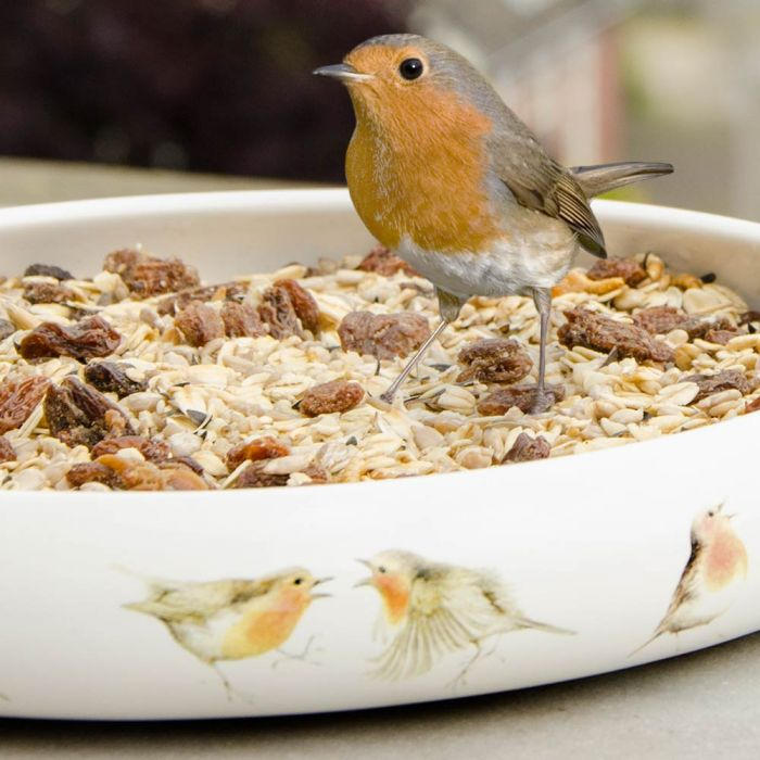 Robin Blend Bird Seed Mix